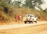 Madkurv til Østafrika